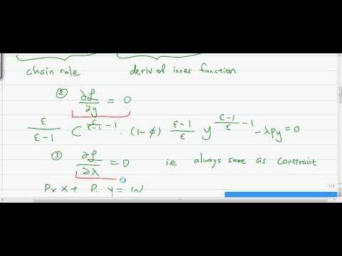 CES Lagrangian