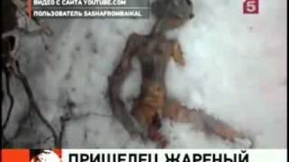 Инопланетянин из  поселка Каменск в Бурятии -- 5 канал