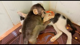 Very lovely baby Danny sleep hug Jury so well -Jury become a good friend of Danny