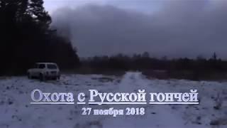 Охота с Русской гончей 27 11 18