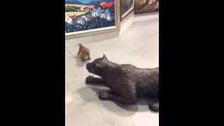 Dog Barking At Statue Of Leopard