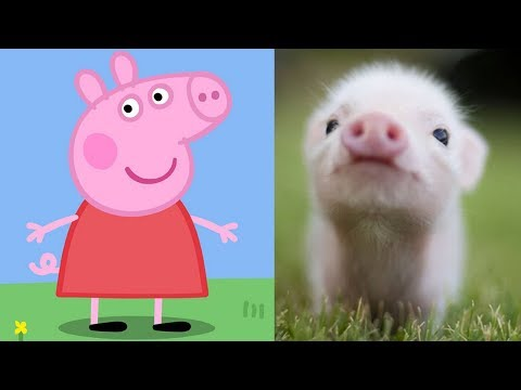Peppa Pig Characters In Real Life Peppa George Zoe Kylie Danny