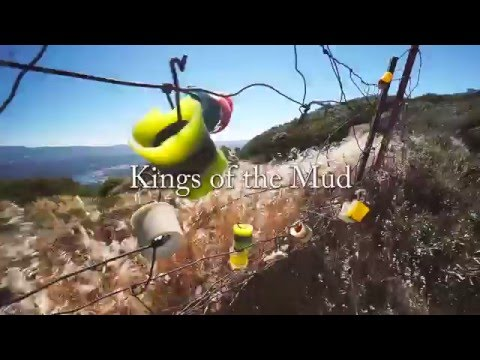 Kings of the Mud / Valhalla Skateboards