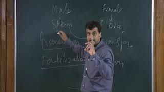 Reproduction:Human Reproduction - 1
