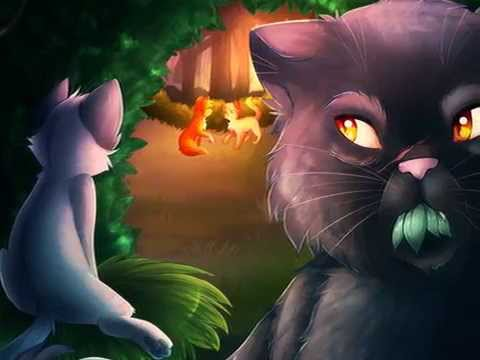 Warrior Cats Cinderpelt: What Hurts the Most