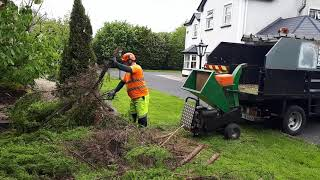 vuclip TFG Tree Service. small wood chipper