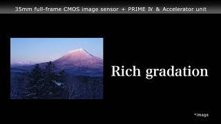 видео Обзор Pentax K-1 mark II