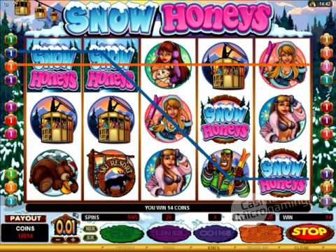 Hasil gambar untuk slot Snow Honeys