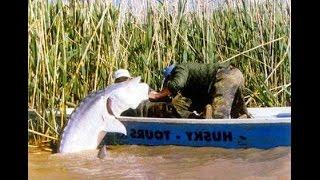 Как ловить раков - Рыбалка - Туризм