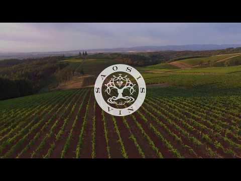 saosis.vin - Sélection de vins biologiques, biodynamiques et naturels