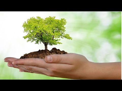 Técnicas de Avaliação de Impactos Ambientais - Documentos