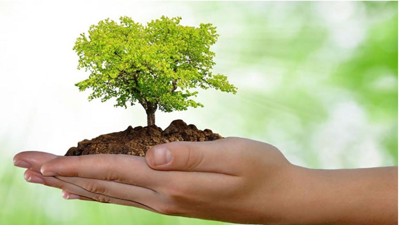 Curso Online Métodos de Avaliação de Impactos Ambientais