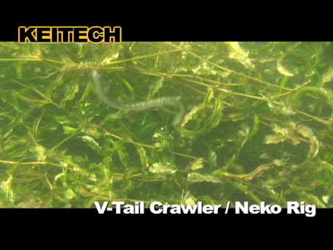 V tail crawler neko rig youtube for Neko rig fishing