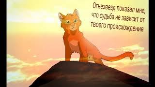 То чему меня научили герои из книги ,, Коты-Воители,,