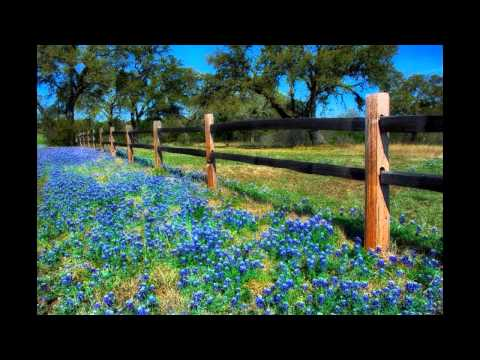 Texas Hill Country & LBJ Ranch Tour from San Antonio - Video