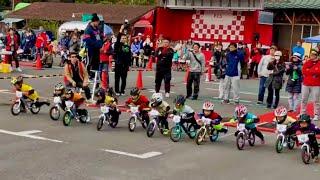 RCS2017 第11戦 4歳 A決勝【ストライダー,Strider,RunningBike,ランバイク,Runbike,バランスバイク,BalanceBike】