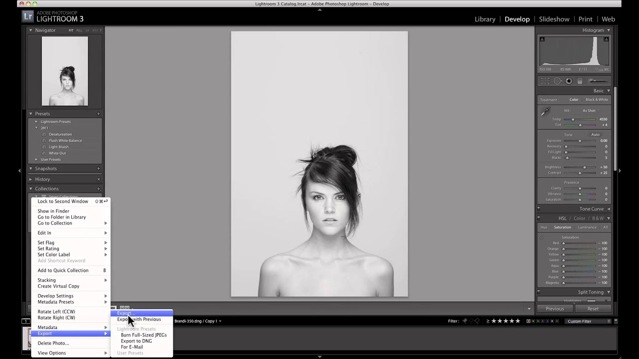 how to make duotone in photoshop