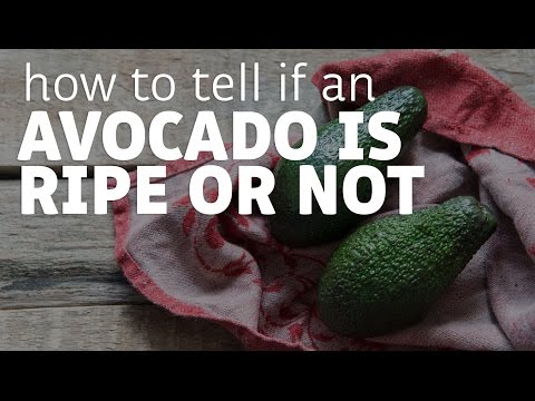 How To Tell If An Avocado Is Ripe And Is At Maximum Deliciousness