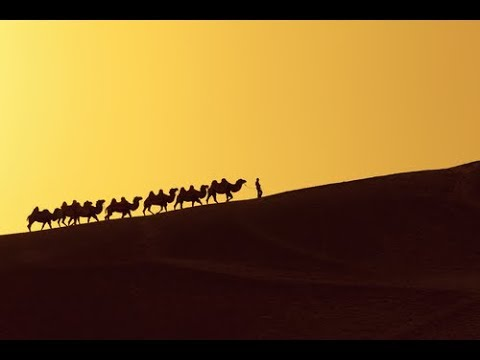 Gerald Celente - Follow the Yellow Silk Road