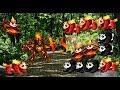Monster Adventures - Aventura 13