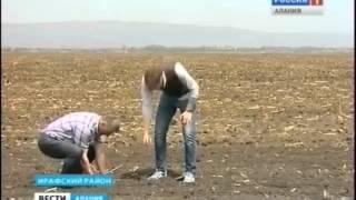 Prove in Campo Moreni in Russia - Moreni Russian Field Days
