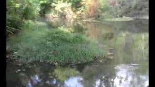 Cleveland Texas--San Jacinto River.3gp
