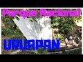 Video de Uruapan