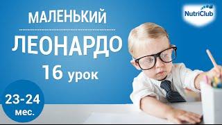 """Интеллектуальное развитие ребенка 2 лет по методике """"Маленький Леонардо"""". Урок 16"""