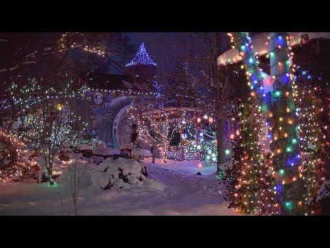 Pattis Christmas Lights 2020 Patti's Winter Wonderland of Lights   YouTube