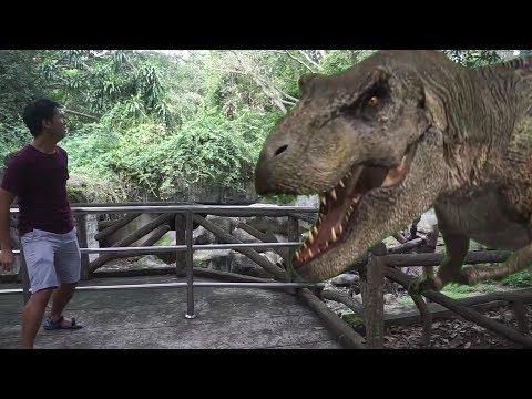 去泰国清迈动物园 THAILAND CHIANG MAI ZOO