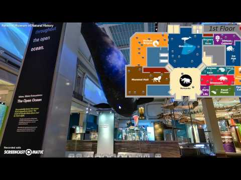 Virtual Tour of Smithsonian National Museum of Natural History