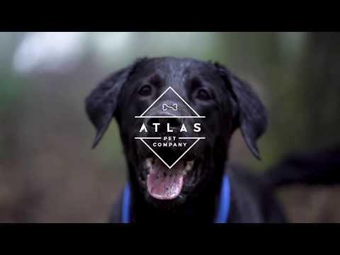 Atlas Pet Company - About Us