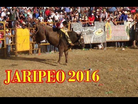 PUROS TOROS A GRAPA JARIPEO EN IHUATZIO MICHOACAN 1 DE ABRIL 2016