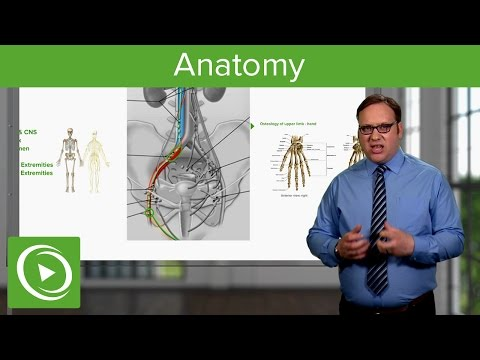anatomy-–-course-preview- -lecturio