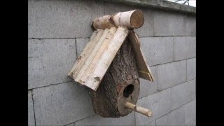 Making a DIY Birdhouse from a log