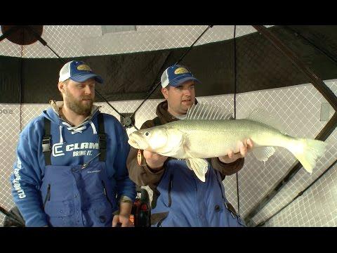 Gigantic Lake Winnipeg Walleye