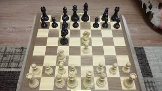 Шахматы. Смешной мат.