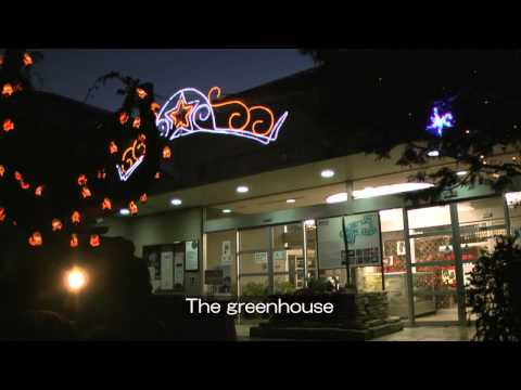 Kyoto Prefectural Botanical Garden (Nighttime Greenhouse Opening and Light-up event)