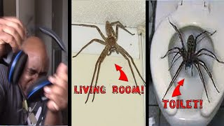 Try Not To Get Scared Challenge HUGE BUG EDITION!!! Part 2