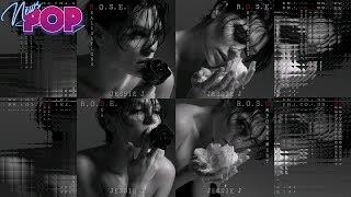 Baixar Jessie J - R.O.S.E (ALBUM REVIEW+TOP SONGS)