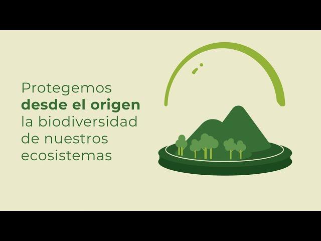 Cerrando el círculo de la excelencia medioambiental - Dia Mundial Medio Ambiente 2021
