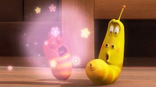LARVA | Pedos de Flor | 2017 Película Completa | Dibujos animados para niños | WildBrain en Español