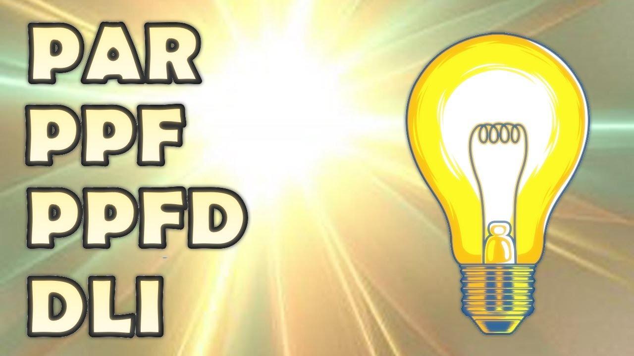 Всё что нужно знать про свет (Спектр, PAR, PPF, PPFD и DLI)