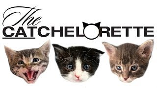 the-catchelorette