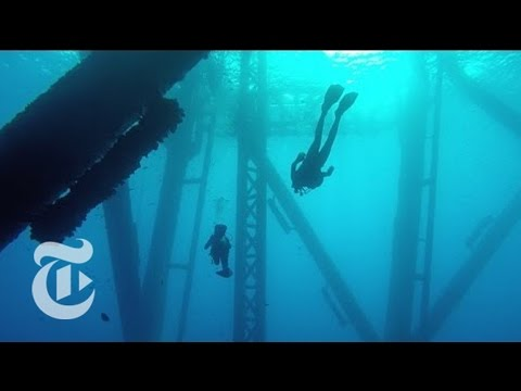Turning Oil Rigs Into Reefs | The New York Times