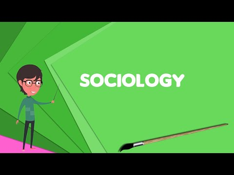What is Sociology? Explain Sociology, Define Sociology, Meaning of Sociology