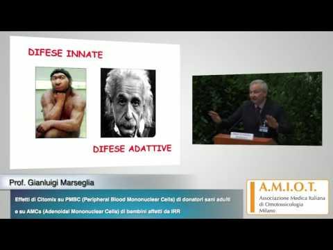 Prof. Gianluigi Marseglia - Effetti di Citomix su PBMC di donatori sani adulti e su AMCs di ...