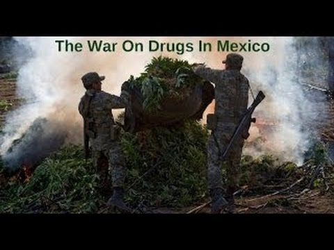 The War On Drugs In Mexico - Mexico Drug War Documentary