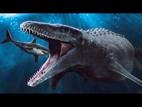 15 Mariana Trench Creatures That Are Scarier Than Megalodon