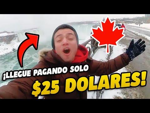 Así Puedes Ir A Las Cataratas Del Niágara Por Solo $25 Dólares Redondo Saliendo De Toronto!